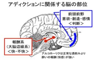 教材の中の図解資料例(2)